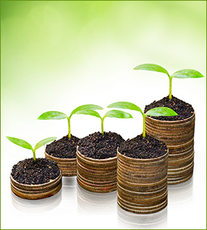 Seedlings on coins