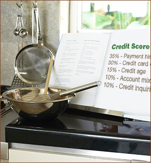 Credit Score Ingredients